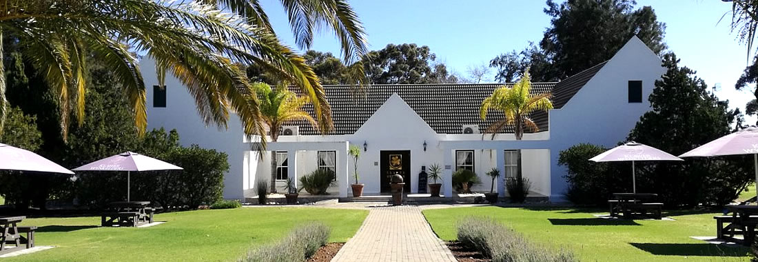 Meet our wines